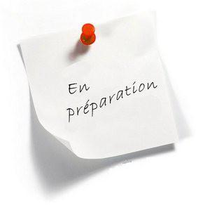 en_preparation